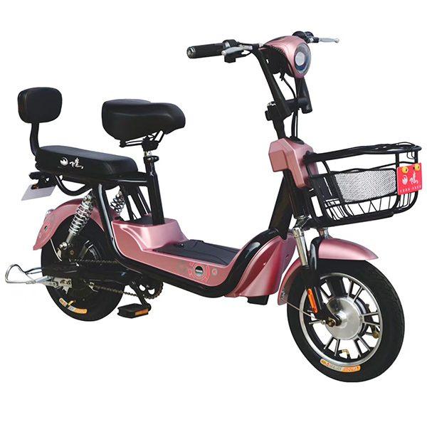 Bicicleta-Electrica-mod-yl14